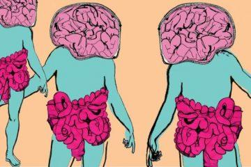 Tại sao vi khuẩn đường ruột có thể làm thay đổi tâm trạng của chúng ta?