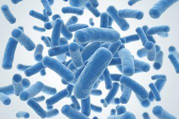 Probiotics có thể giúp ngăn ngừa trầm cảm